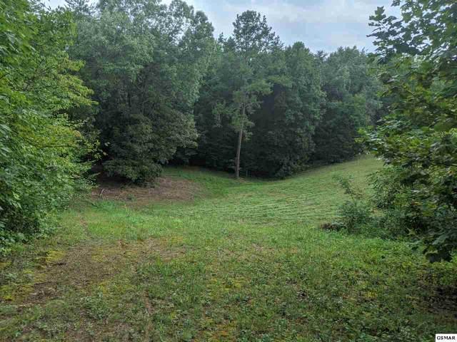 Blue Springs Rd, Strawberry Plains, TN 37871 (#230244) :: Jason White Team | Century 21 Four Seasons