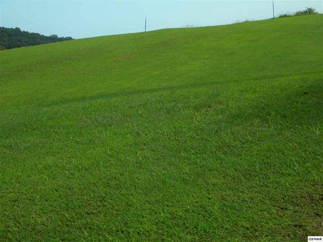 Lot 28 River Run Circle, Sevierville, TN 37876 (#230250) :: Four Seasons Realty, Inc