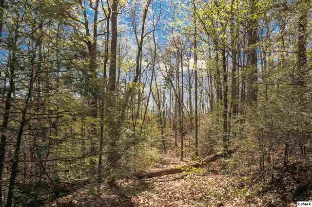Lower Powdermill Rd. P/O Parcel 074., Sevierville, TN 37876 (#230261) :: Jason White Team | Century 21 Four Seasons