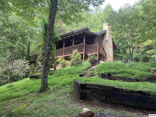 4175 Lumber Jack Way, Sevierville, TN 37876 (#230262) :: Billy Houston Group