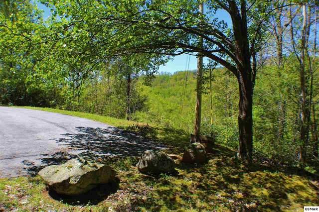 Lots 24-25 Mathis Hollow Rd, Gatlinburg, TN 37738 (#230269) :: Jason White Team | Century 21 Four Seasons