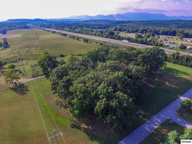 Wild Pear Trail, Dandridge, TN 37725 (#230271) :: Four Seasons Realty, Inc