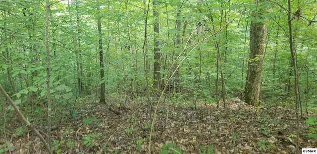 Lot 9 Walden Flats Way, Sevierville, TN 37862 (#230302) :: Colonial Real Estate