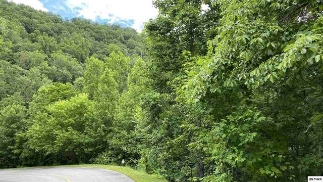 Lot 119 Long Rifle Rd, Sevierville, TN 37876 (#230307) :: Jason White Team | Century 21 Legacy