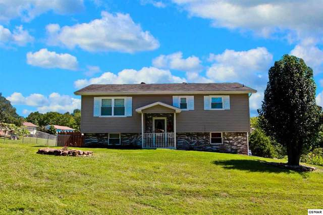 179 Brookview Dr, Newport, TN 37821 (#230313) :: Billy Houston Group