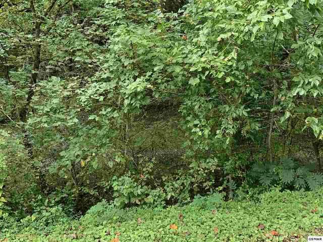 Flat Branch Rd., Sevierville, TN 37862 (#230318) :: Jason White Team | Century 21 Four Seasons