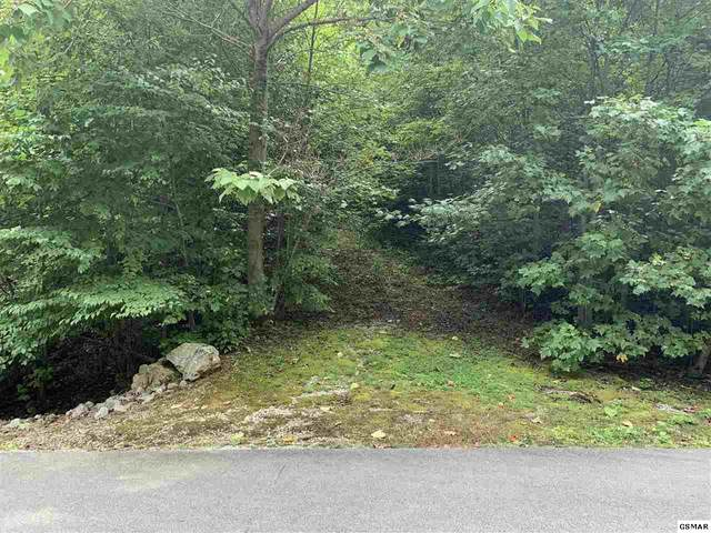LOT 120 Long Rifle Rd, Sevierville, TN 37862 (#230334) :: Suzanne Walls with eXp Realty