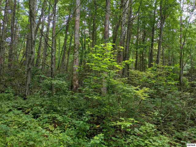 Alpine Dr Lot 32A, Sevierville, TN 37862 (#230344) :: Colonial Real Estate