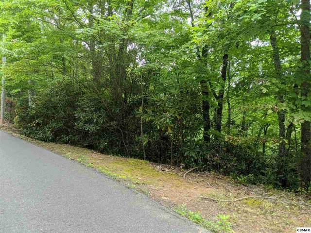 Black Gum Gap Rd Lot 16, Gatlinburg, TN 37738 (#230349) :: Jason White Team | Century 21 Four Seasons