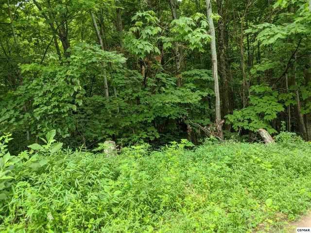 Cherry View Ln Lot 631, Gatlinburg, TN 37738 (#230351) :: Jason White Team | Century 21 Four Seasons