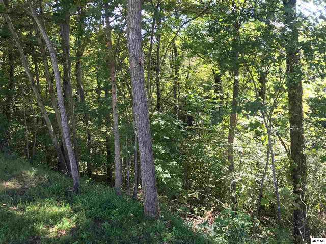 Lot 38 Longspur Trail, Sevierville, TN 37862 (#230390) :: Tennessee Elite Realty