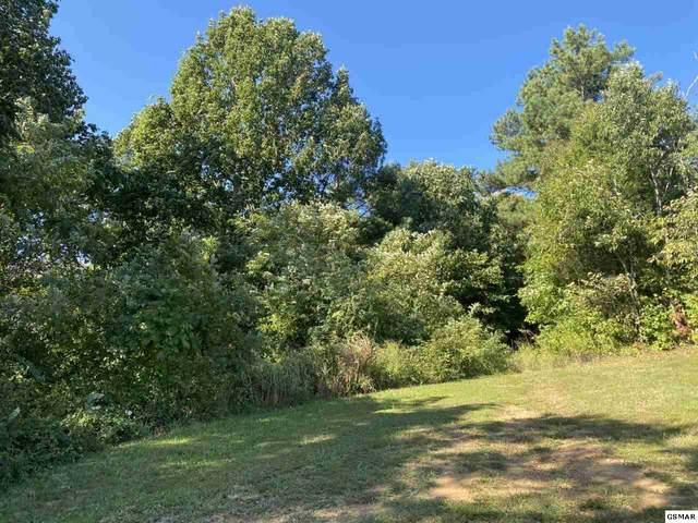 Par Par 020 05 Moody Rd Map 35, Jefferson City, TN  (#230424) :: Prime Mountain Properties