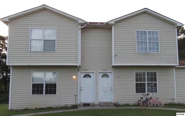 1033-1035 Bluebird Lane, White Pine, TN 37890 (#230440) :: Prime Mountain Properties