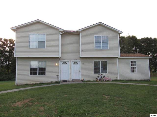 1027-1035 Bluebird Lane, White Pine, TN 37890 (#230441) :: Prime Mountain Properties