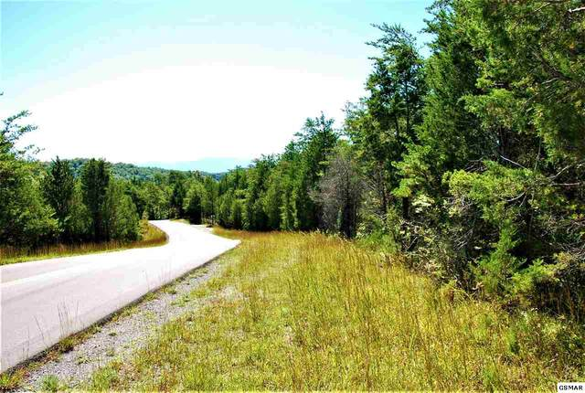 Lot #2 Parrotts Chapel Road, Sevierville, TN 37876 (#230447) :: Billy Houston Group