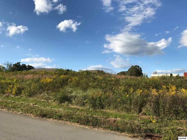 Lot 60 Quiet Oaks Way, Dandridge, TN 37725 (#230487) :: Four Seasons Realty, Inc