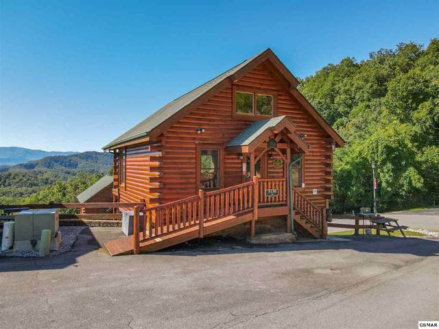 3130 Lakeview Lodge Dr Mountain View, Sevierville, TN 37862 (#230489) :: Jason White Team | Century 21 Four Seasons