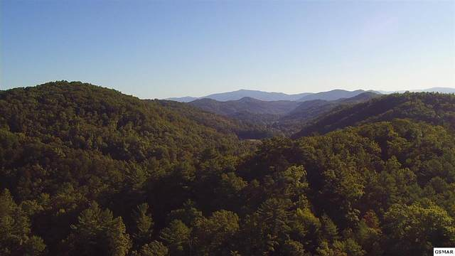 Reed Howard Lane, Sevierville, TN 37876 (#230502) :: Colonial Real Estate