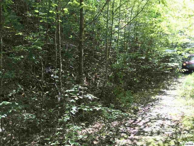 Lot 3 Coy Rhea Way, Sevierville, TN  (#230509) :: Jason White Team | Century 21 Legacy