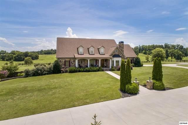 1642 Ch Rankin Rd, White Pine, TN 37890 (#230512) :: Prime Mountain Properties