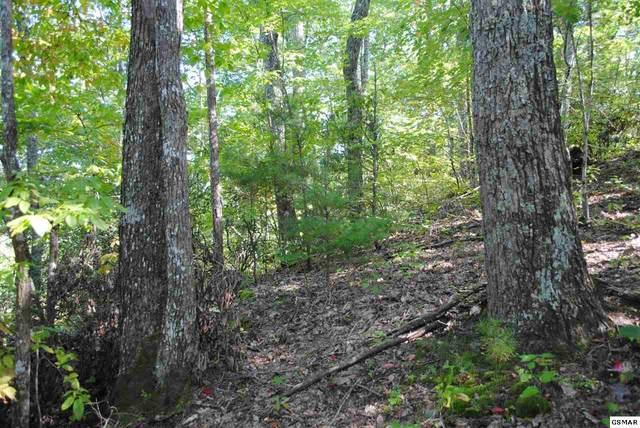 Pioneer Trail, Sevierville, TN 37876 (#230520) :: Jason White Team   Century 21 Legacy