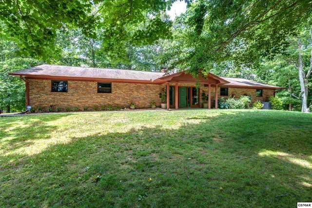 309 Henry Clark Ln, Rutledge, TN 37861 (#230570) :: Tennessee Elite Realty