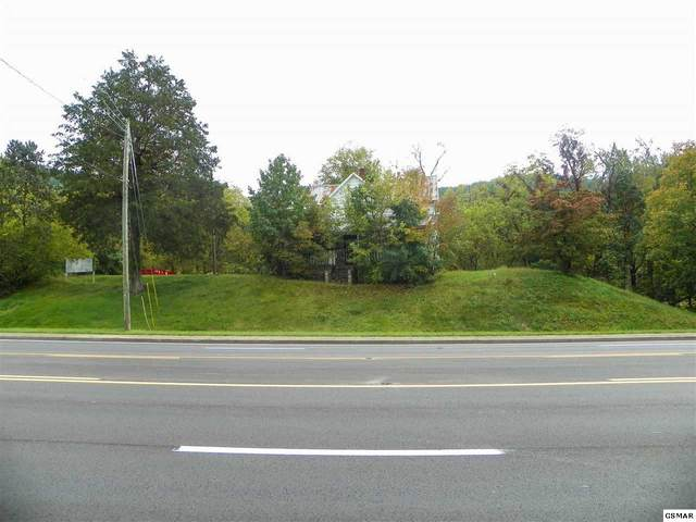 1191 Wears Valley Road, Pigeon Forge, TN 37863 (#230578) :: Jason White Team | Century 21 Four Seasons
