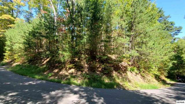 Lot 12 Treehouse Lane, Sevierville, TN 37862 (#230602) :: Tennessee Elite Realty