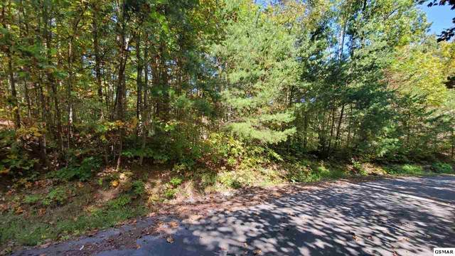 Lot 13 Treehouse Lane, Sevierville, TN 37862 (#230603) :: Tennessee Elite Realty