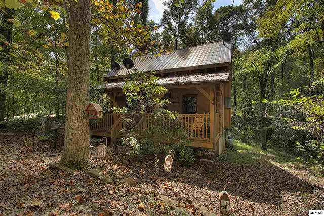 1921 Charles Lewis Way Unit 1, Sevierville, TN 37876 (#230642) :: Suzanne Walls with eXp Realty