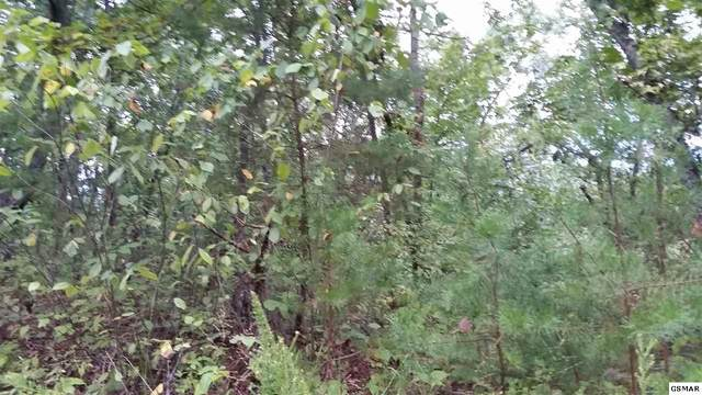 Parcel 027.0 Dogwood Dr, Sevierville, TN 37876 (#230644) :: Colonial Real Estate