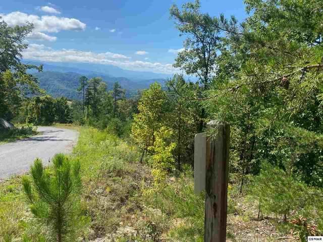 Lot 46 Mountain Ash Way, Sevierville, TN 37876 (#230662) :: Century 21 Legacy