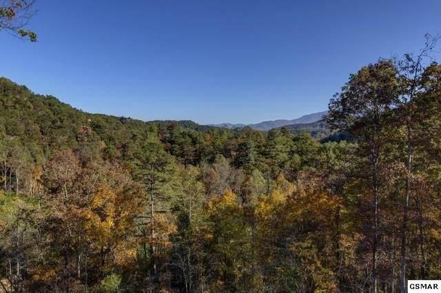 Lot 91 Parkside Retreat Way, Sevierville, TN  (#230669) :: Jason White Team | Century 21 Four Seasons