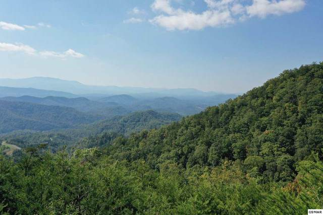 Lot 60 Mountain Ash Way, Sevierville, TN 37876 (#230670) :: Jason White Team | Century 21 Four Seasons