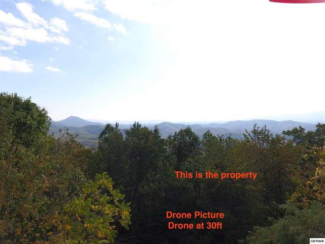 Shell Mountain, Sevierville, TN 37876 (#230694) :: Colonial Real Estate