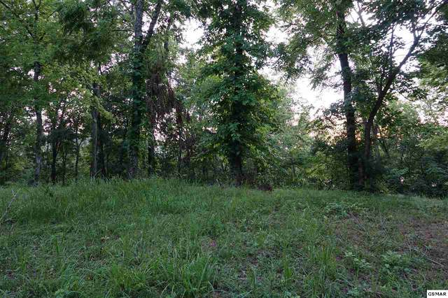 Lot 15 Waterford Way, Newport, TN 37821 (#230723) :: Colonial Real Estate