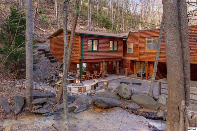 734 Heiden Drive, Gatlinburg, TN 37738 (#230728) :: The Terrell Team