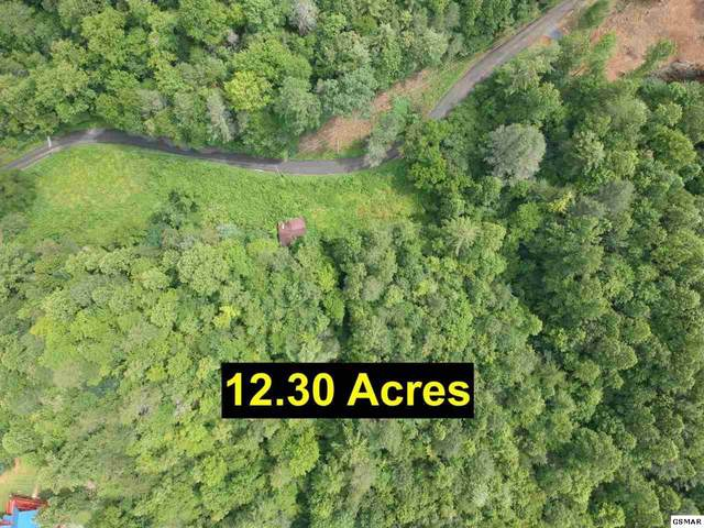 Grassy Branch Loop, Sevierville, TN 37876 (#230740) :: Four Seasons Realty, Inc