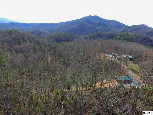 Lot Lot 3 Balls Hollow, Cosby, TN 37722 (#230747) :: Four Seasons Realty, Inc