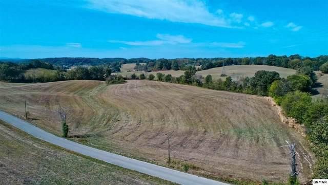 TRACT 7 Timber Ridge, Greeneville, TN 37743 (#230763) :: Tennessee Elite Realty
