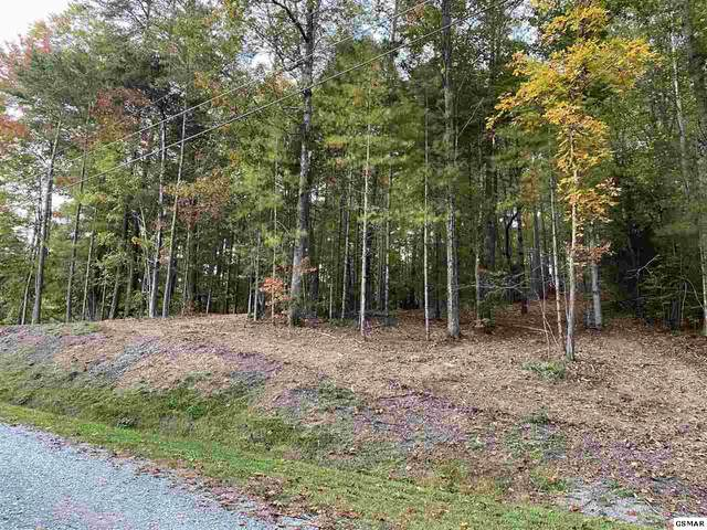 Ginas Way Lot 38, Sevierville, TN 37862 (#230764) :: Billy Houston Group