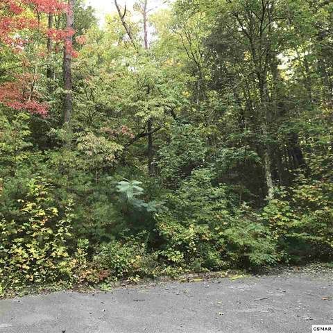 Lot 14 Peace Lane, Sevierville, TN  (#230767) :: Colonial Real Estate