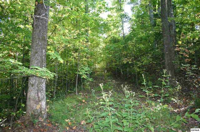Lot 28 Sonshine Ridge Rd, Cosby, TN 37722 (#230774) :: Colonial Real Estate