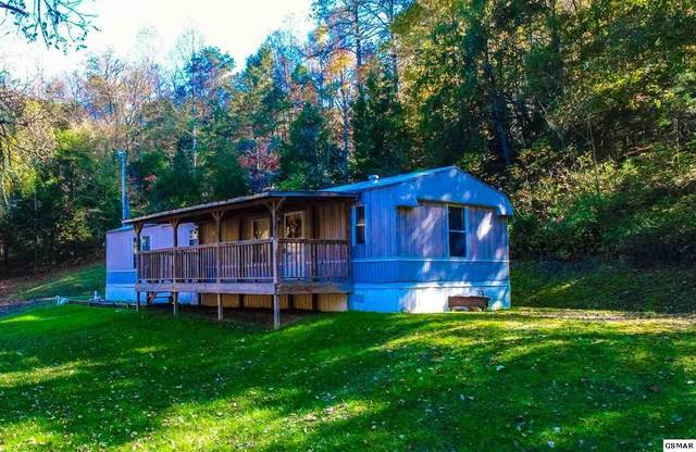 2464 Fowler Rd, Bybee, TN 37713 (#230775) :: Prime Mountain Properties