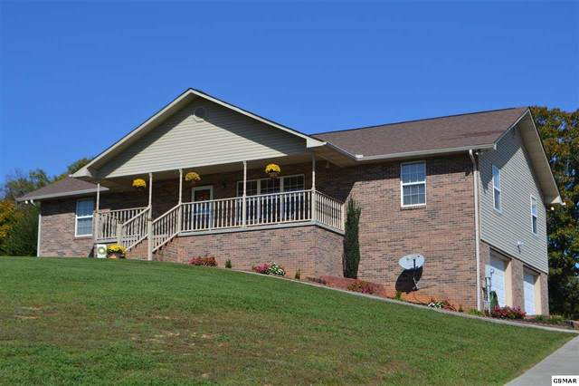 1919 Big Buck Ln Mccleary Pointe, Sevierville, TN 37876 (#230780) :: Billy Houston Group