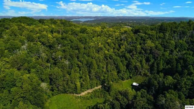 25ac Lower Rinehart Rd, Dandridge, TN 37725 (#230787) :: The Terrell Team
