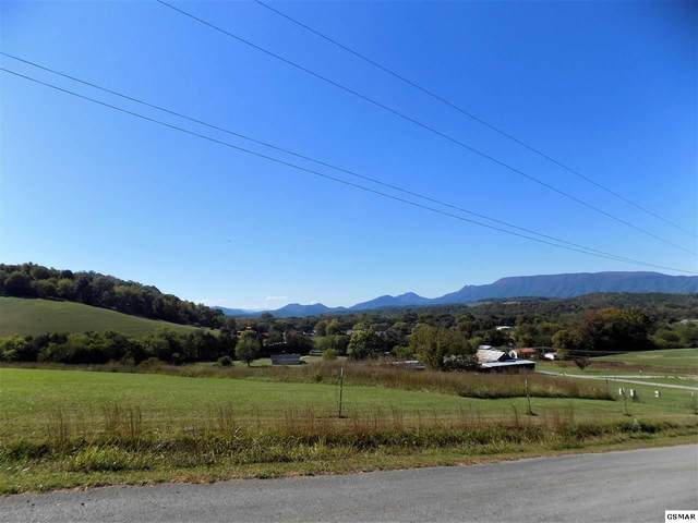 Parcel 074.0 Video Way, Newport, TN 37821 (#230801) :: Colonial Real Estate