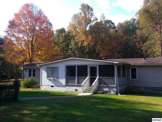 4775 Cate Road, Strawberry Plains, TN 37871 (#230836) :: Prime Mountain Properties