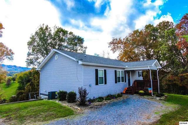 234 Orange Pride Rd, Newport, TN 37821 (#230837) :: Colonial Real Estate