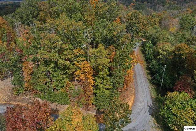 Lot 16/1319 Waters Edge Dr, Baneberry, TN 37890 (#230841) :: Prime Mountain Properties